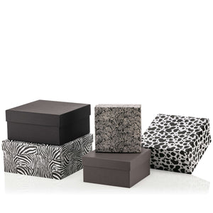 Animal Square Box