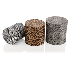 Animal Collection Cylinder - 3 Piece - Gift Box
