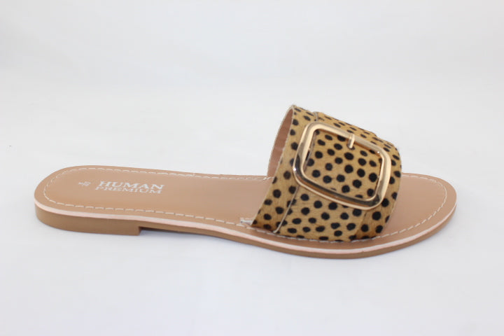 Zion Leopard Print Slides with Buckle - Cheeta Print Zion Slides - Basic State