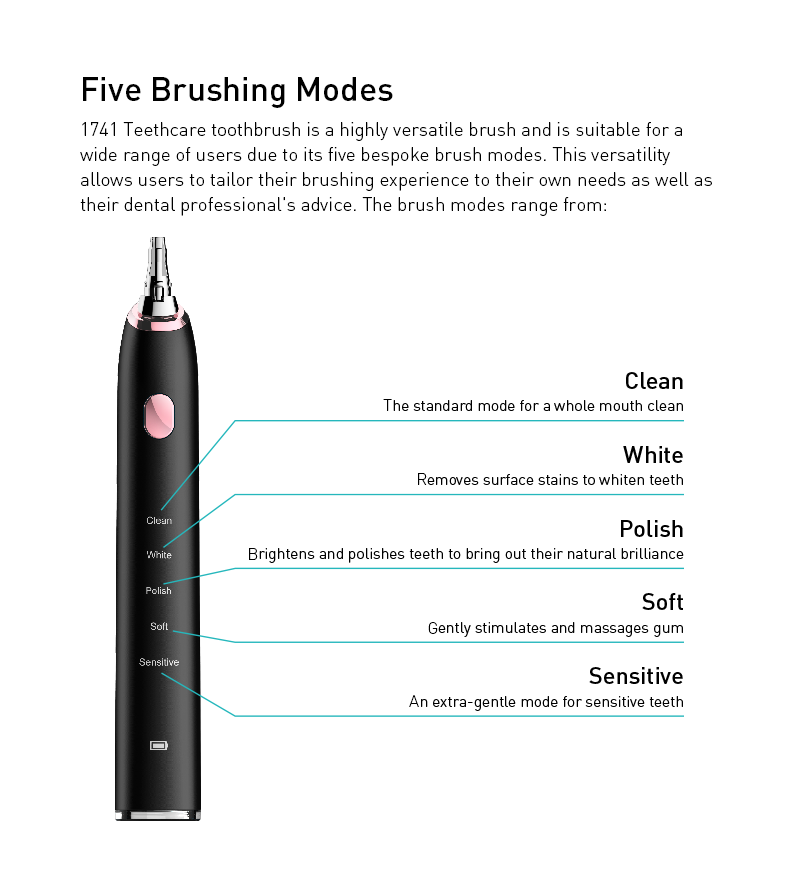 Leyoung  Sonic Electric Toothbrush,Rechargeable Toothbrush 5 Models in Black
