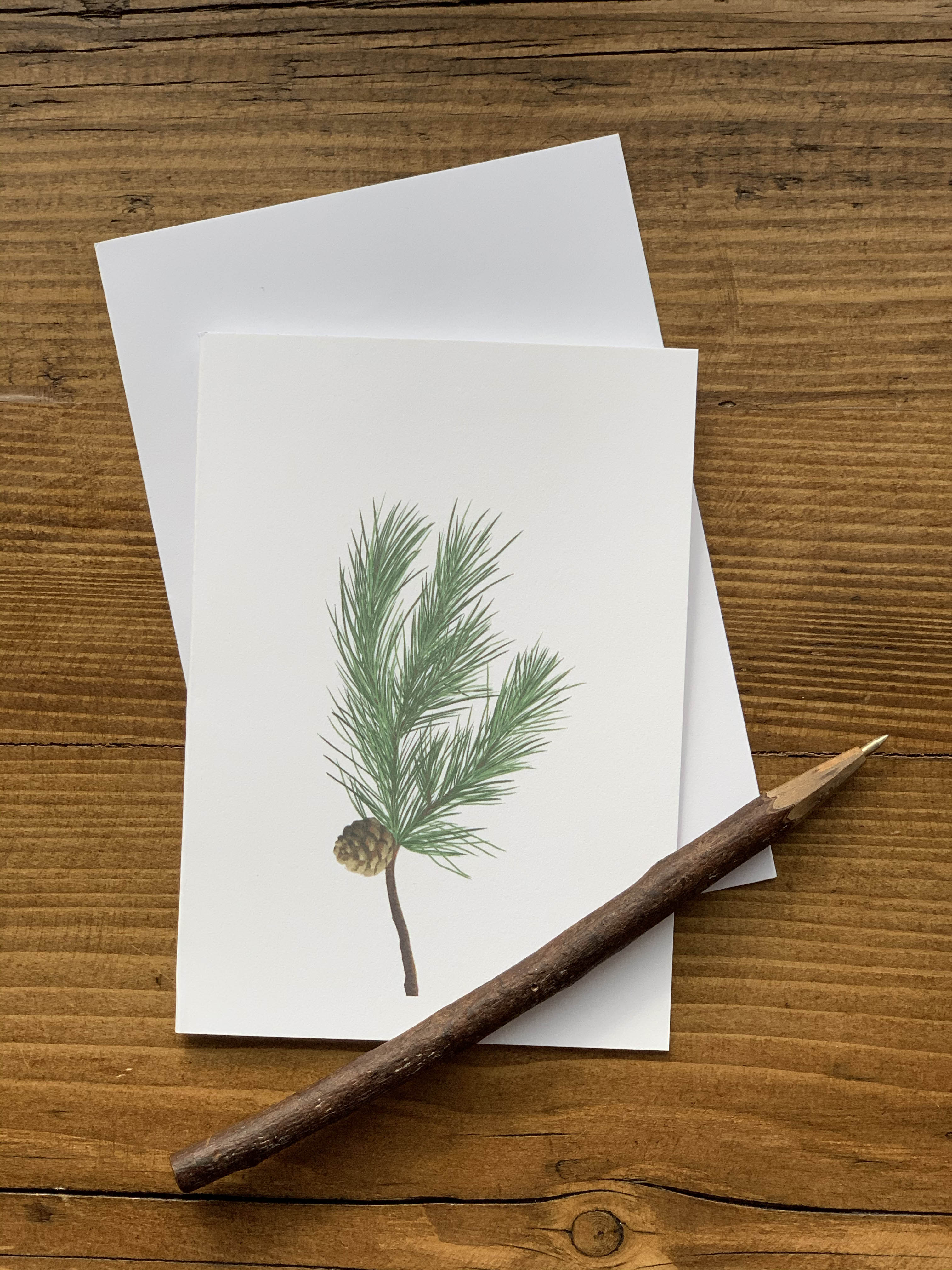 Pine Notecards - Pack of 5