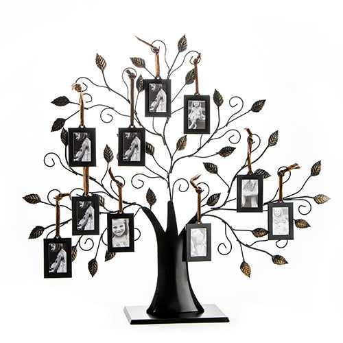 Family Tree Picture Frame Display with 10 Hanging Picture Photo Frames - Large 20 x 18 Metal Tree - 10 Ornamental 2x3 Frames