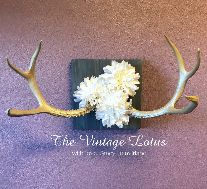 Champagne Antlers Decor/Jewelry Rack