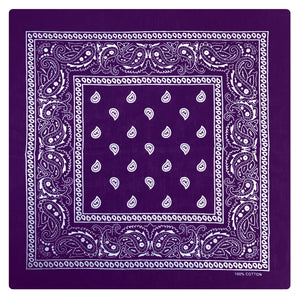 Hot Leathers Classic Purple Paisley Bandana