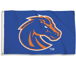 Youth football Broncos flag