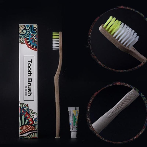 Portable Travel Camping Soft Hair Toothbrush + Toothpaste