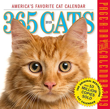 365 Cats Color Page-A-Day Desk Calendar 2019 [6  X 6  Inches]