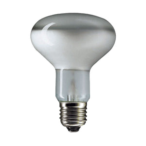 reflector light bulb R80 60 watt