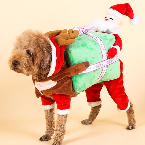 Funny Xmas Costume For Dog & Cat-Black Friday Sales Now!🔥