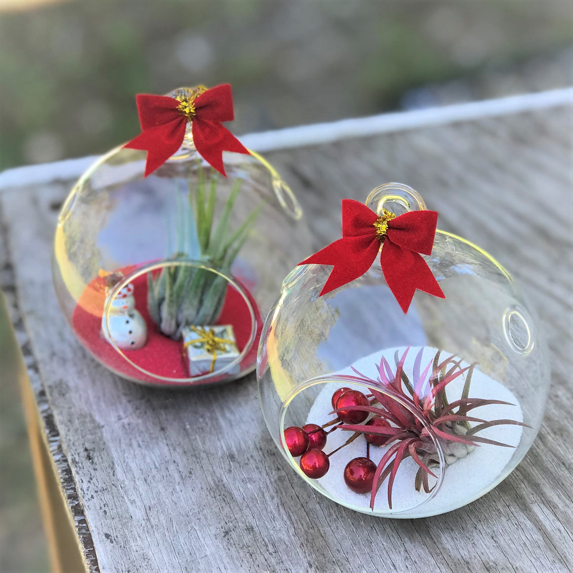 Holiday Globe Set of 2 - Cute & Cheerful Christmas Decor