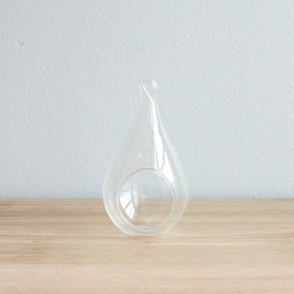 Wholesale - Teardrop Glass Terrariums