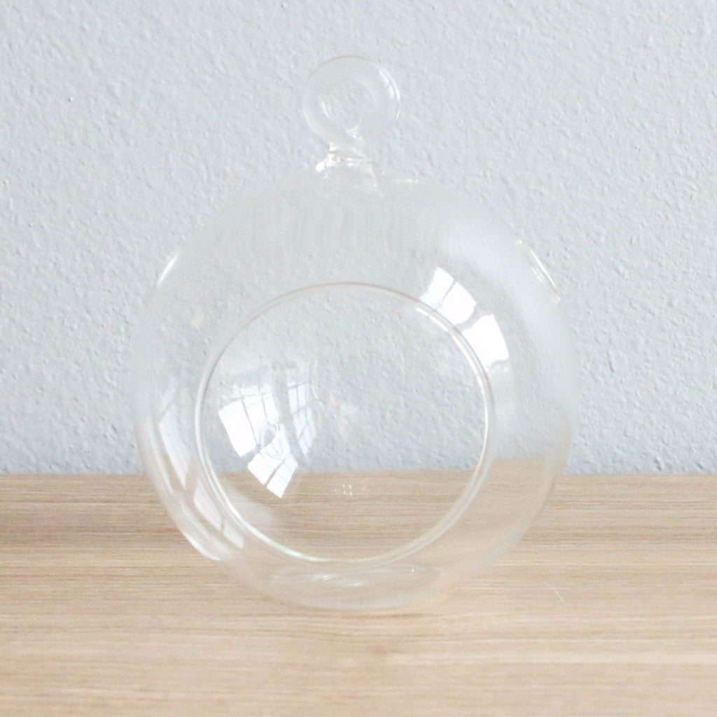 Wholesale - Case Pricing with Free Shipping / Hanging Flat Bottom Glass Terrariums