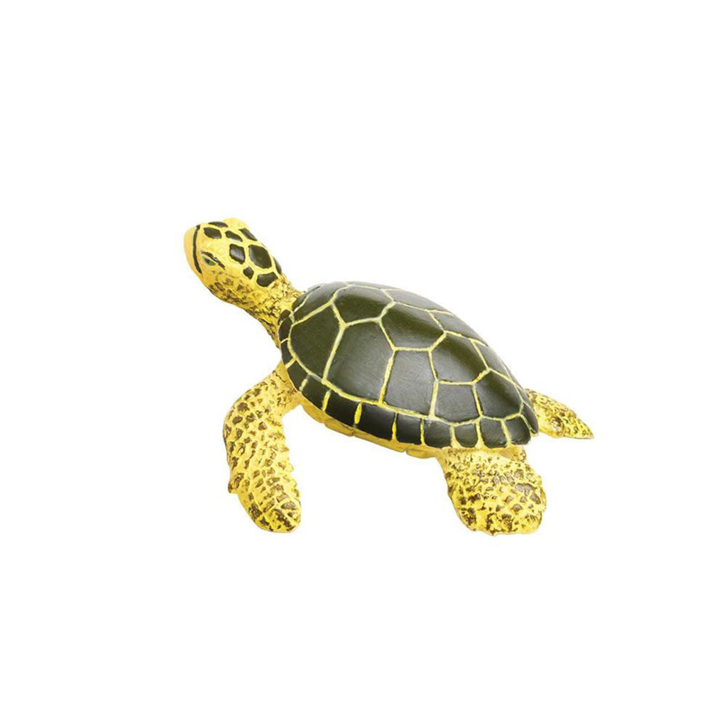 Baby Green Sea Turtle Sea Life Animal Figure Safari Ltd