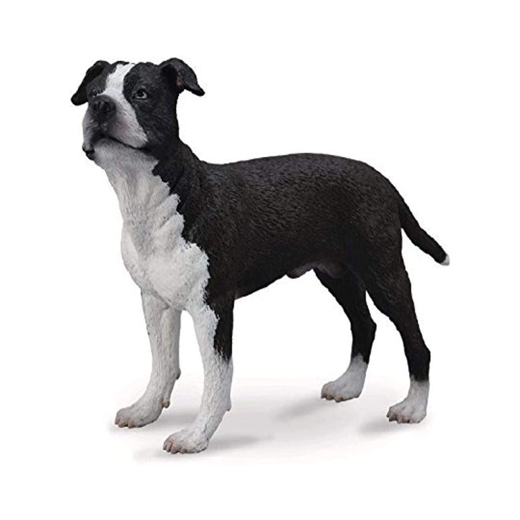 CollectA American Staffordshire Terrier Animal Figure 88610