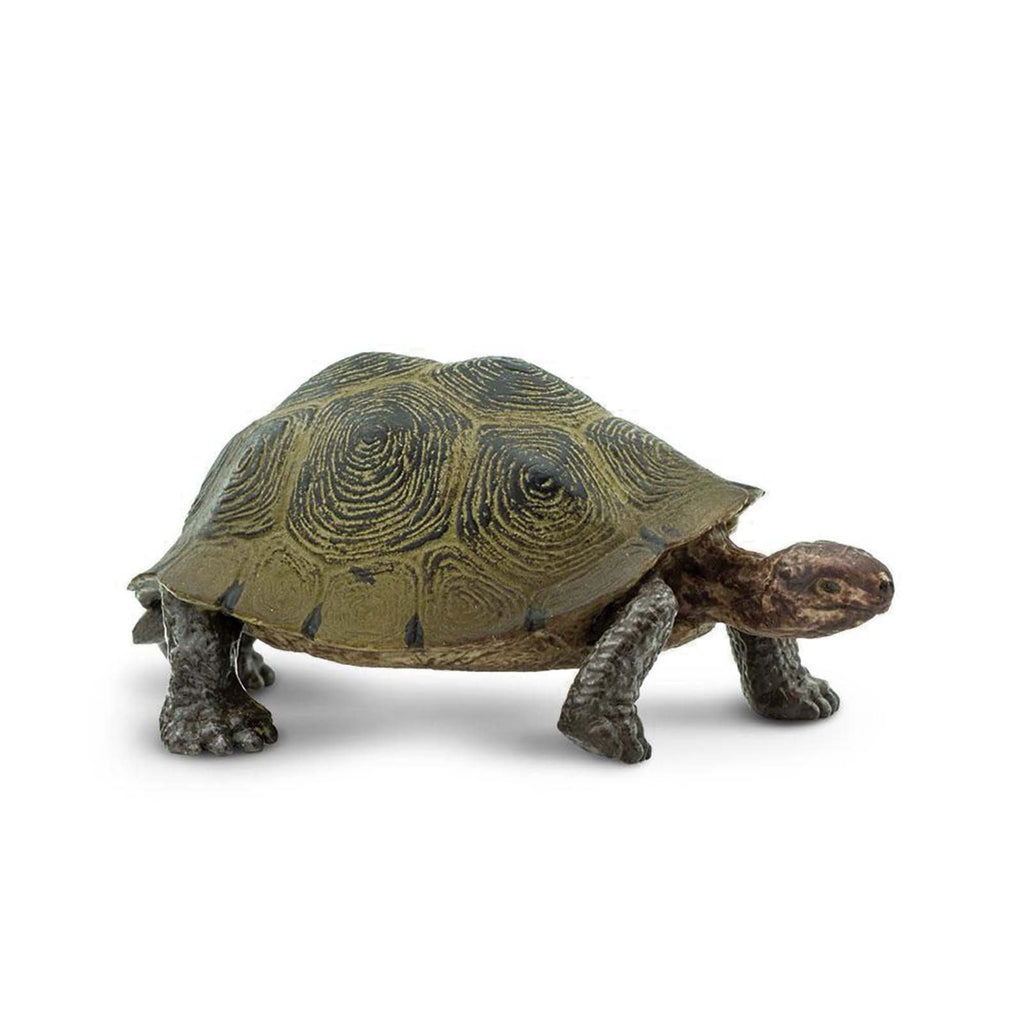 Desert Tortoise Wild Safari Animal Figure Safari Ltd