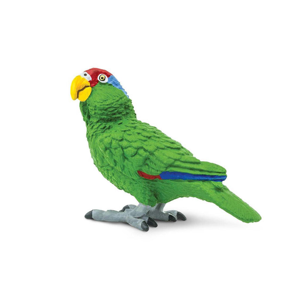 Green-Cheeked Amazon Parrot Wings Of The World Birds Figure Safari Ltd