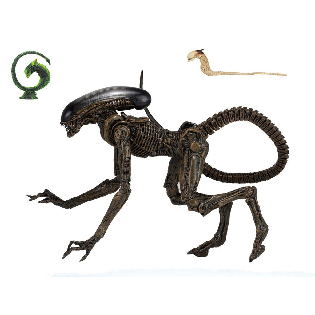 NECA Alien 3 Ultimate Dog Alien Edition 7 Inch Action Figure