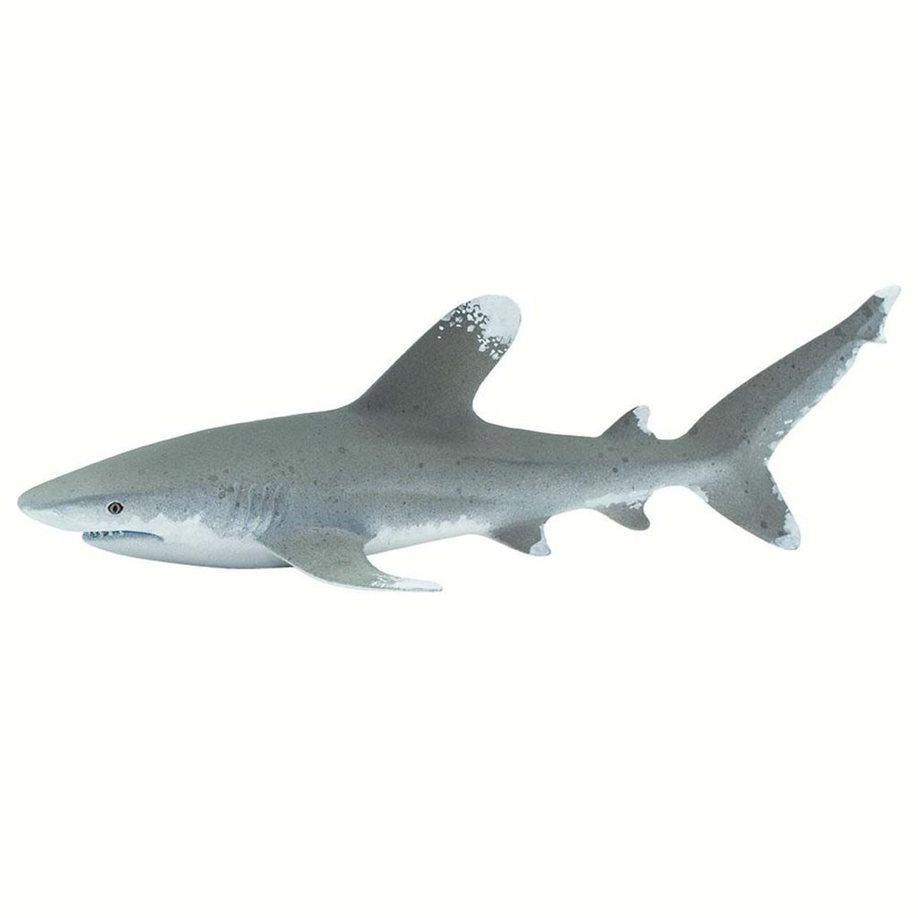 Oceanic Whitetip Shark Wild Safari Ocean Figure Safari Ltd 100271