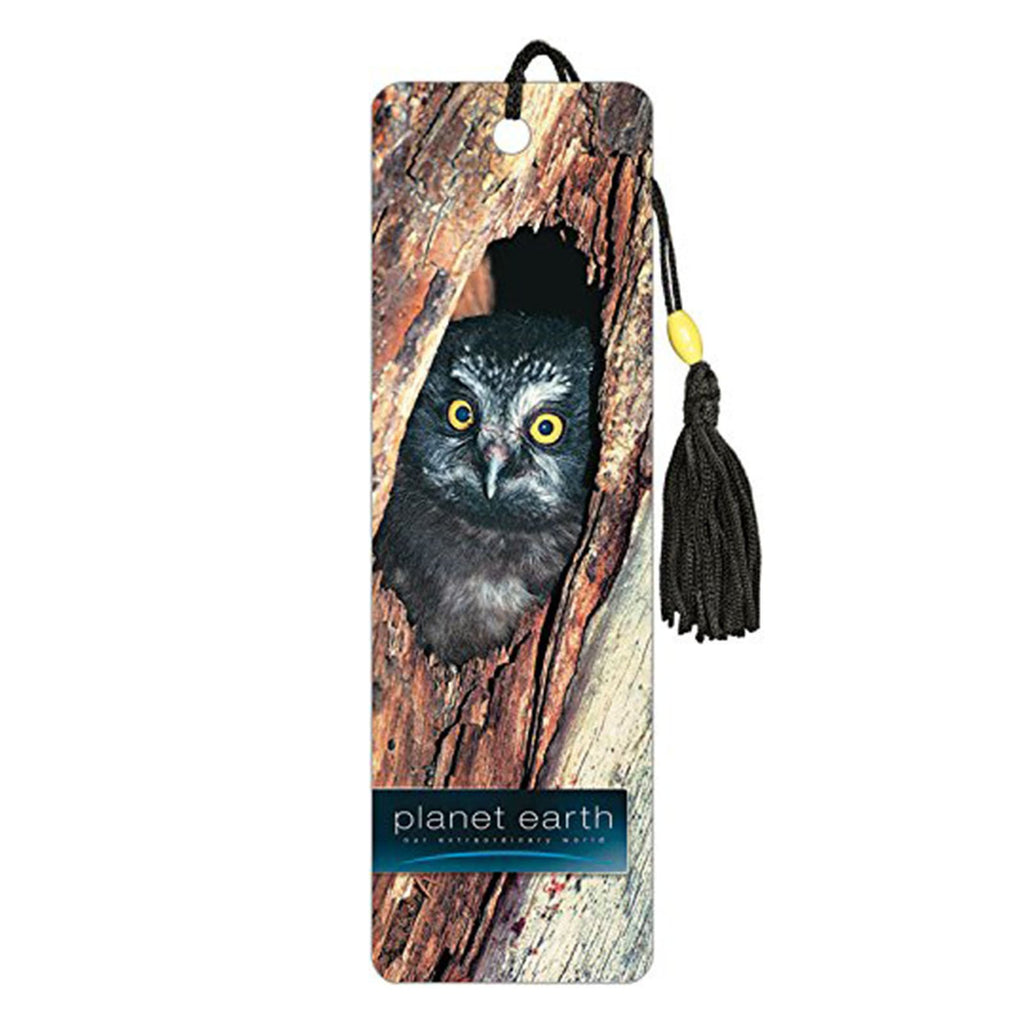 Planet Earth Owl Premier Bookmark
