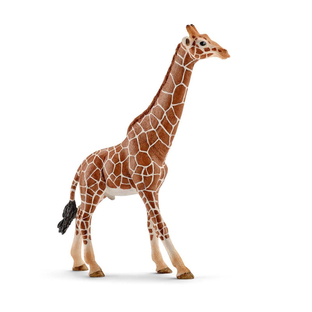 Animals - Schleich Male Giraffe Figure