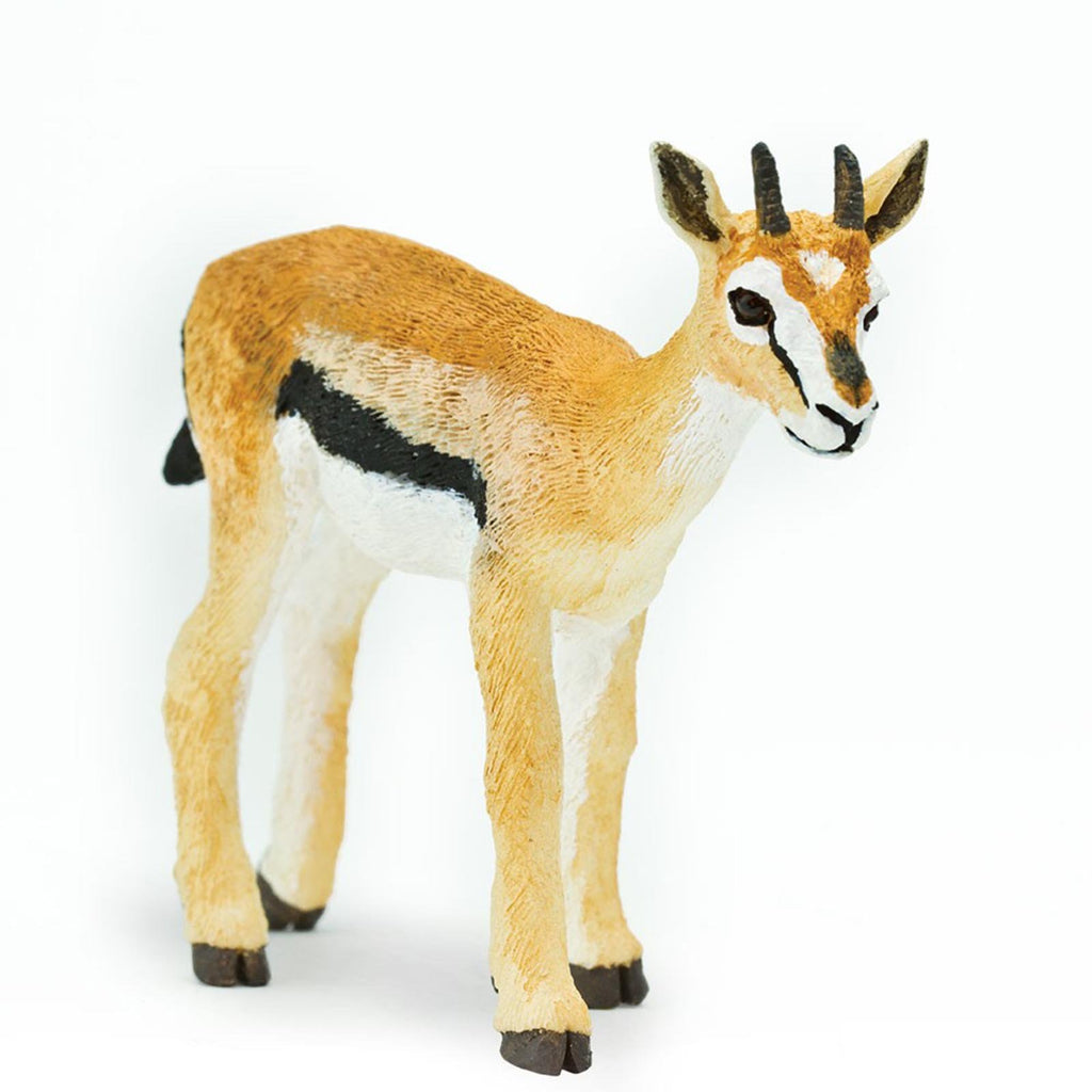 Mammal Figures - Thomson's Gazelle Wild Safari Animal Figure Safari Ltd