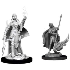 Wizkids Pathfinder Battles Deep Cuts Unpainted Female Human Oracles (Magic User) Figure Set