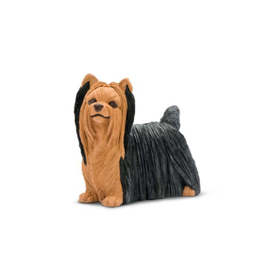Mammal Figures - Yorkshire Terrier Best In Show Dogs Figure Safari Ltd