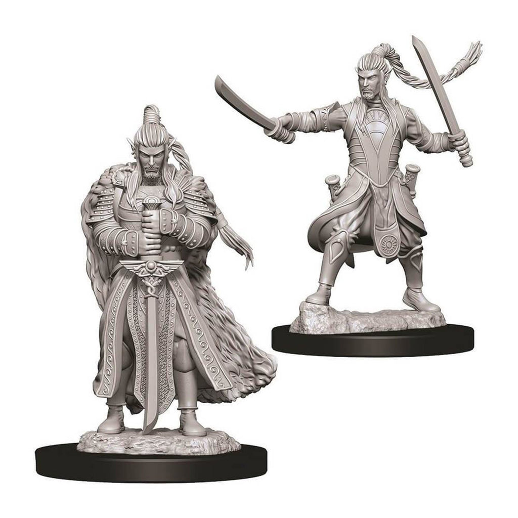 Dungeons And Dragons Male Elf Paladin Nolzur's Miniatures