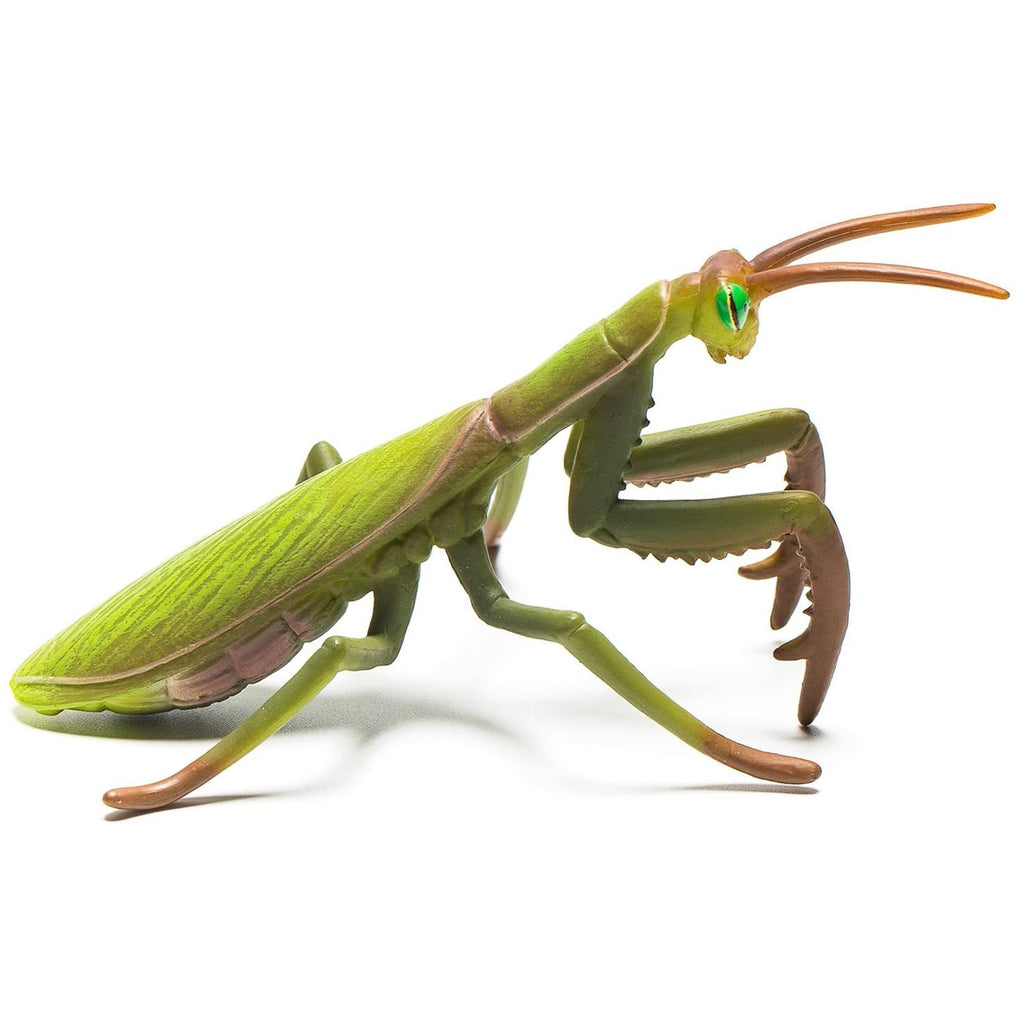 Animal Figure - CollectA Praying Mantis Animal Figure 88351