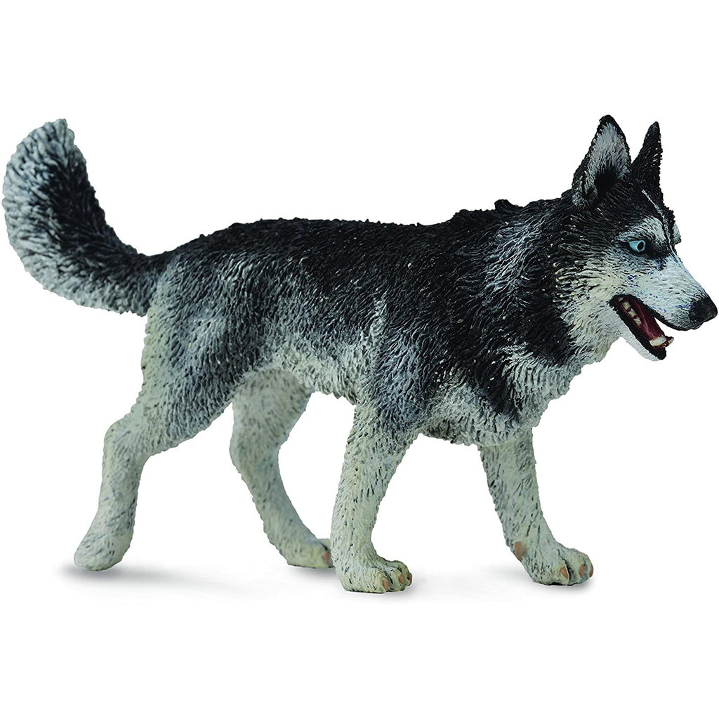 Animal Figure - CollectA Siberian Husky Animal Figure 88707