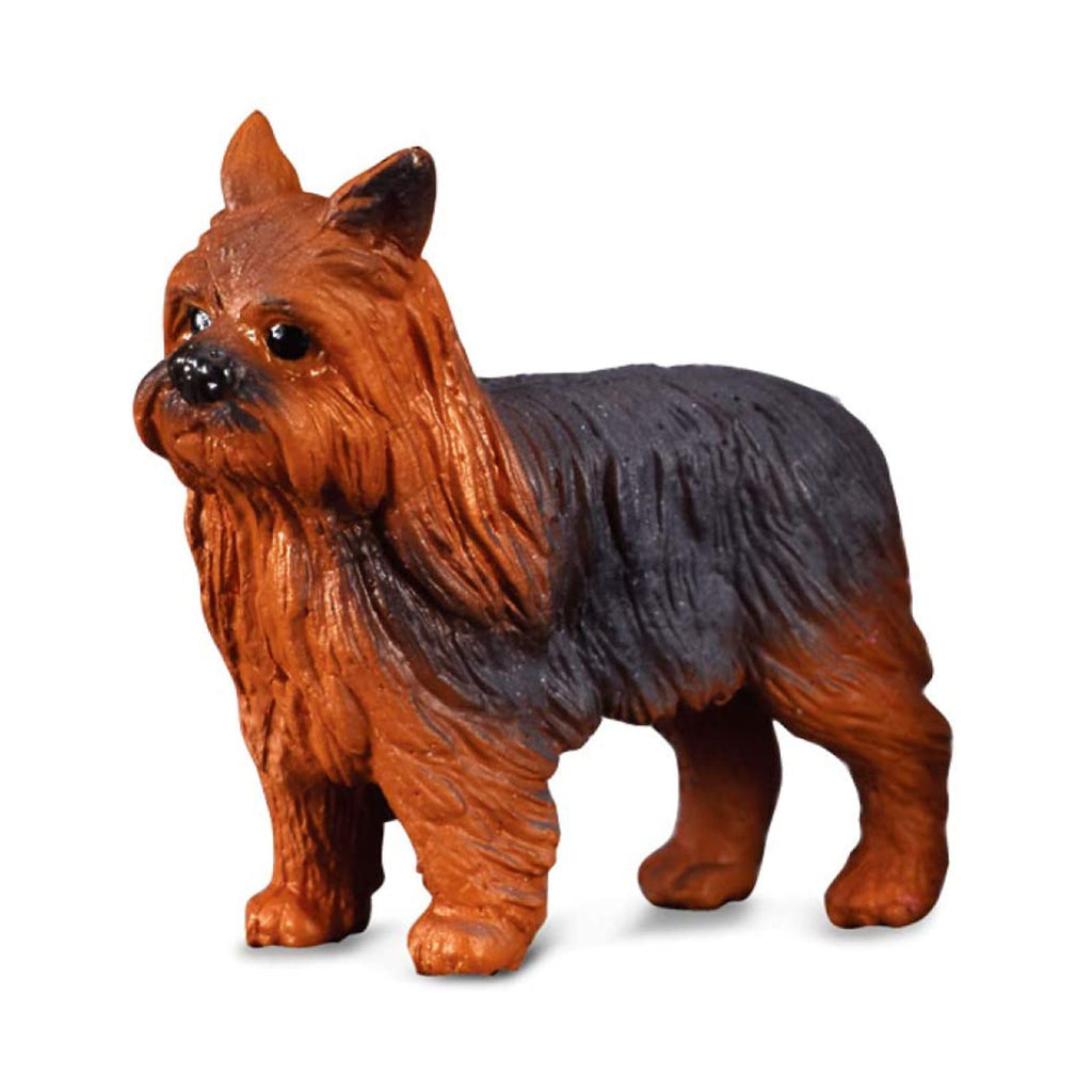 Animal Figure - CollectA Yorkshire Terrier Dog Animal Figure 88078