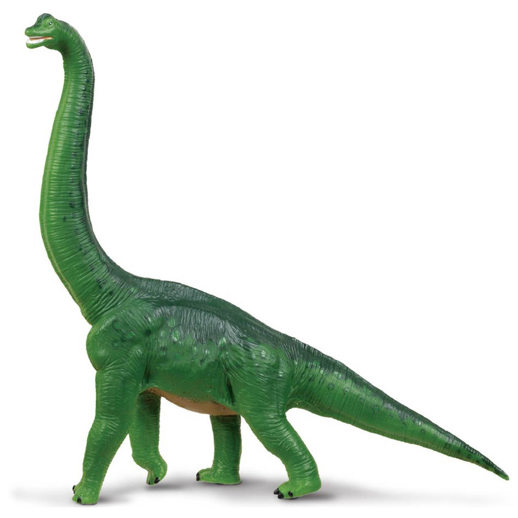 Brachiosaurus Green Wild Safari Dinosaurs Figure Safari Ltd