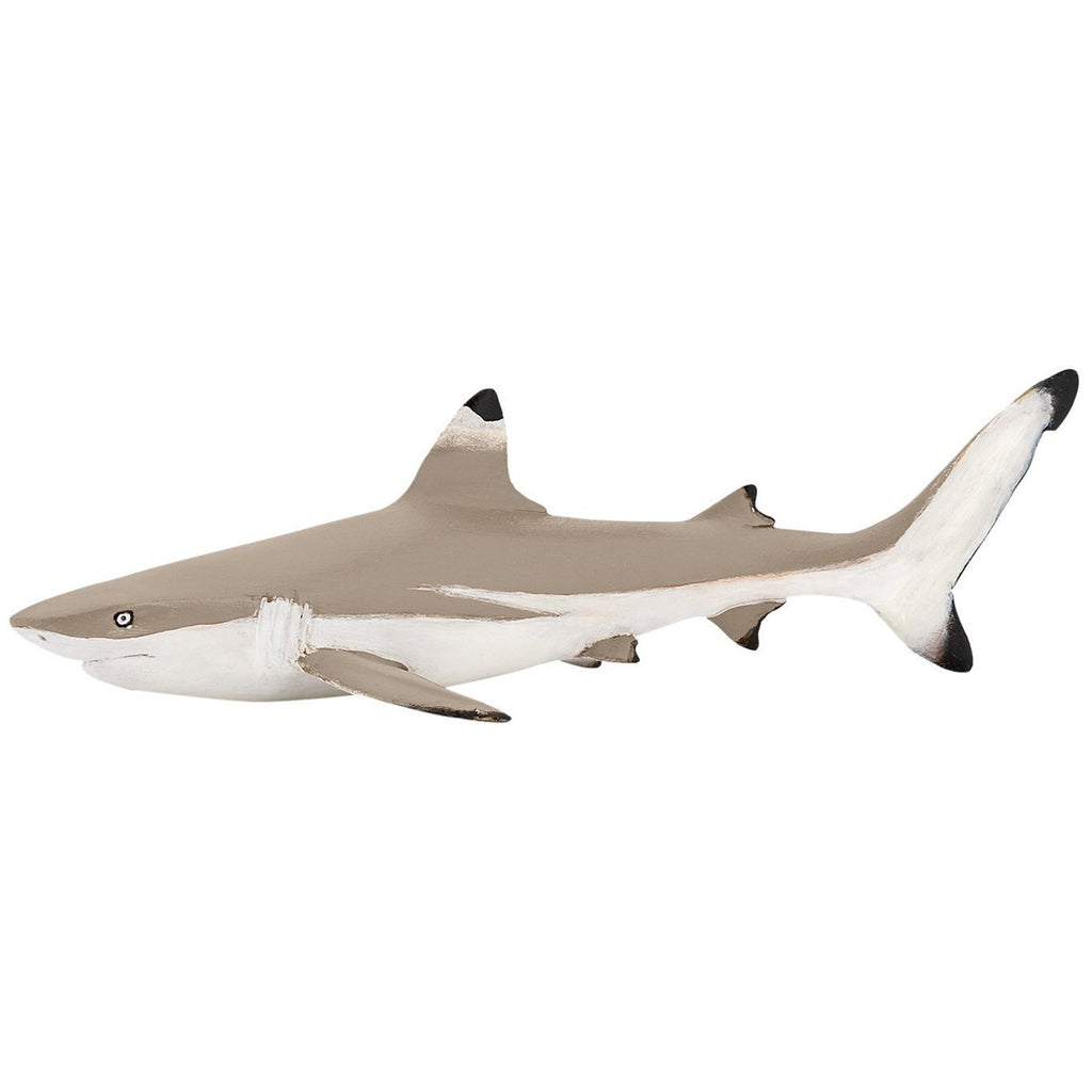 Figure - Papo Blacktip Reef Shark Animal Figure 56034