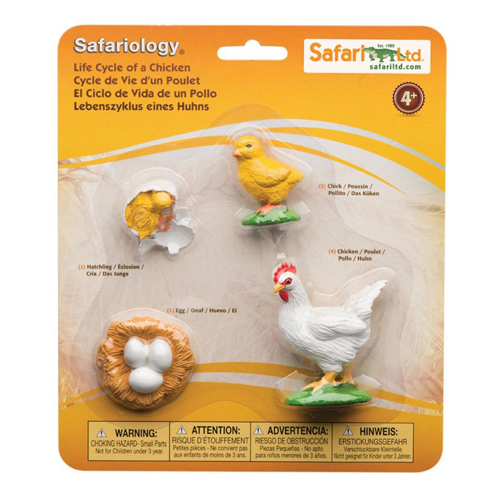 Life Cycle Of A Chicken Figures Safari Ltd - Radar Toys