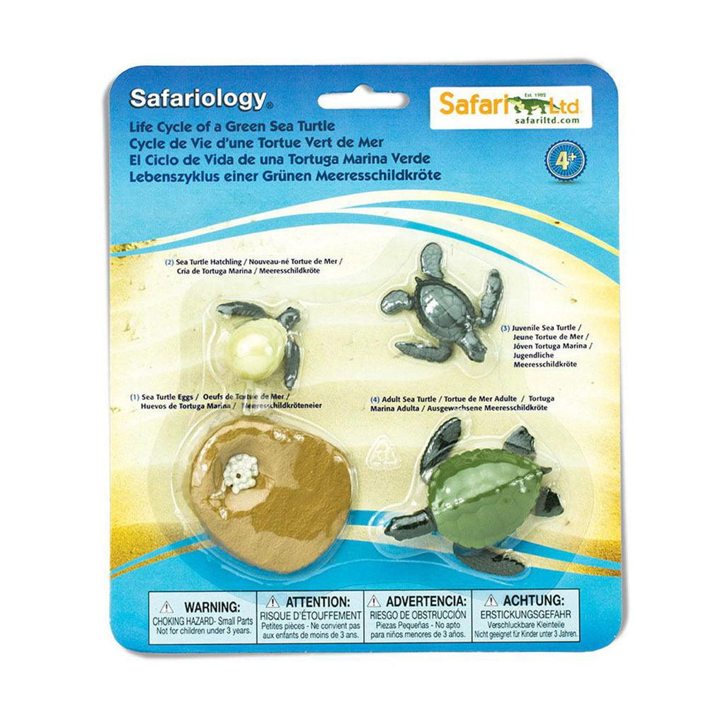 Life Cycle Of A Green Sea Turtle Safari Ltd - Radar Toys