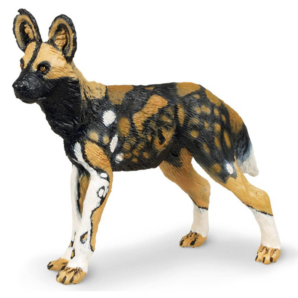 African Wild Dog Wildlife Figure Safari Ltd - Radar Toys