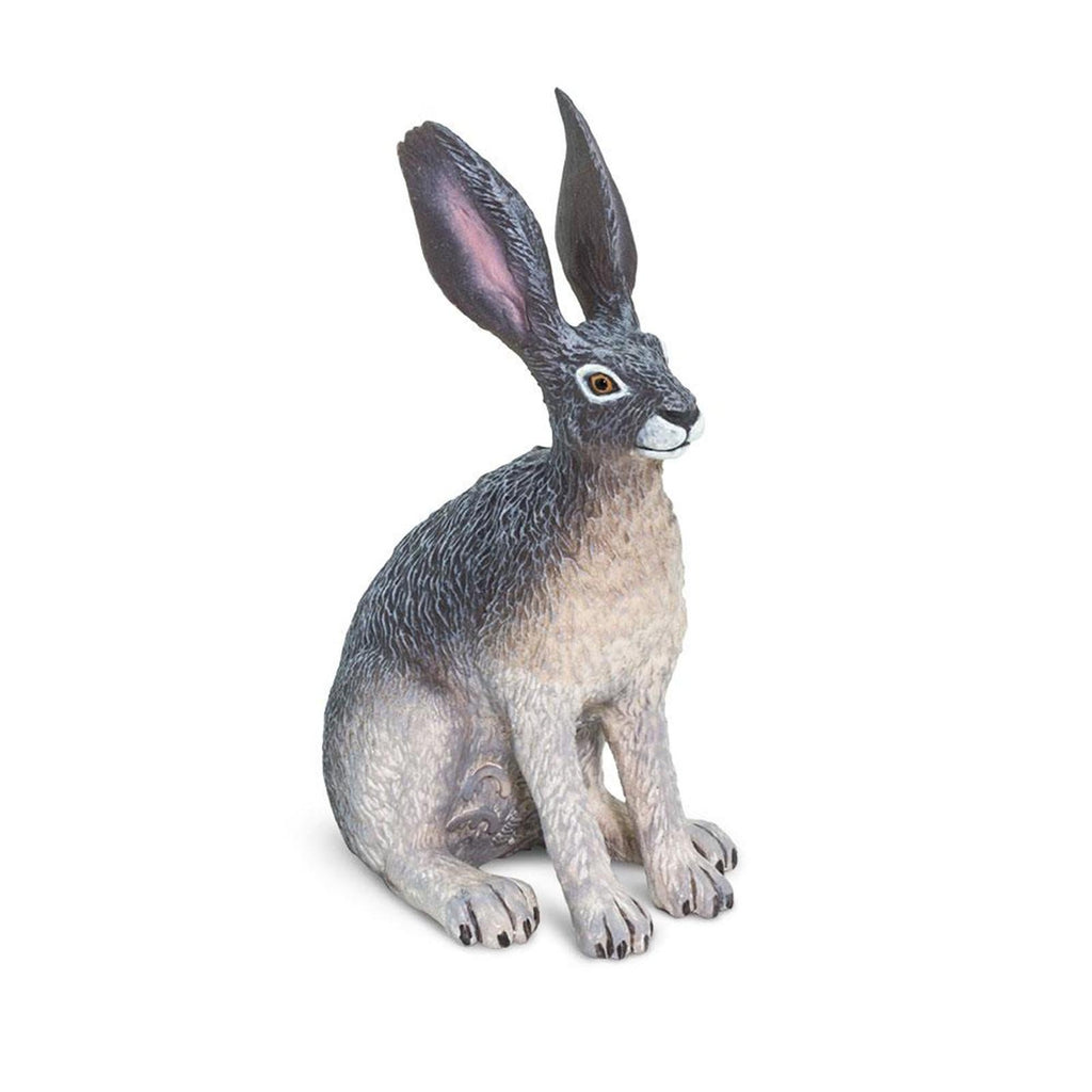 American Desert Hare Animal Figure Safari Ltd 182029