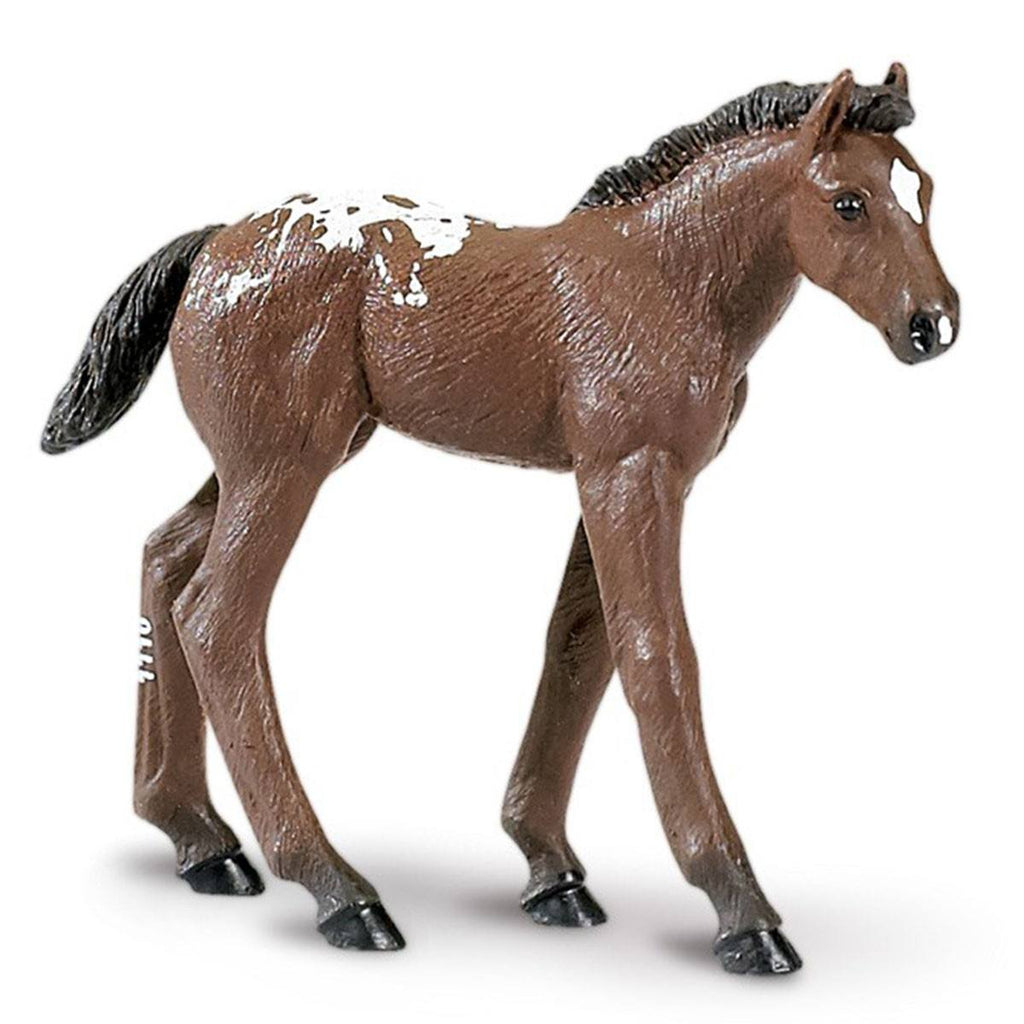 Appaloosa Foal Winner's Circle Horses Figure Safari Ltd - Radar Toys