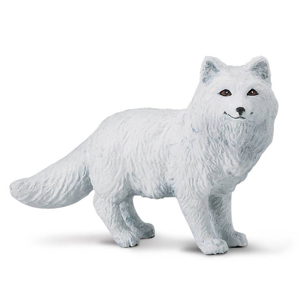 Arctic Fox Wild Safari Figure Safari Ltd - Radar Toys