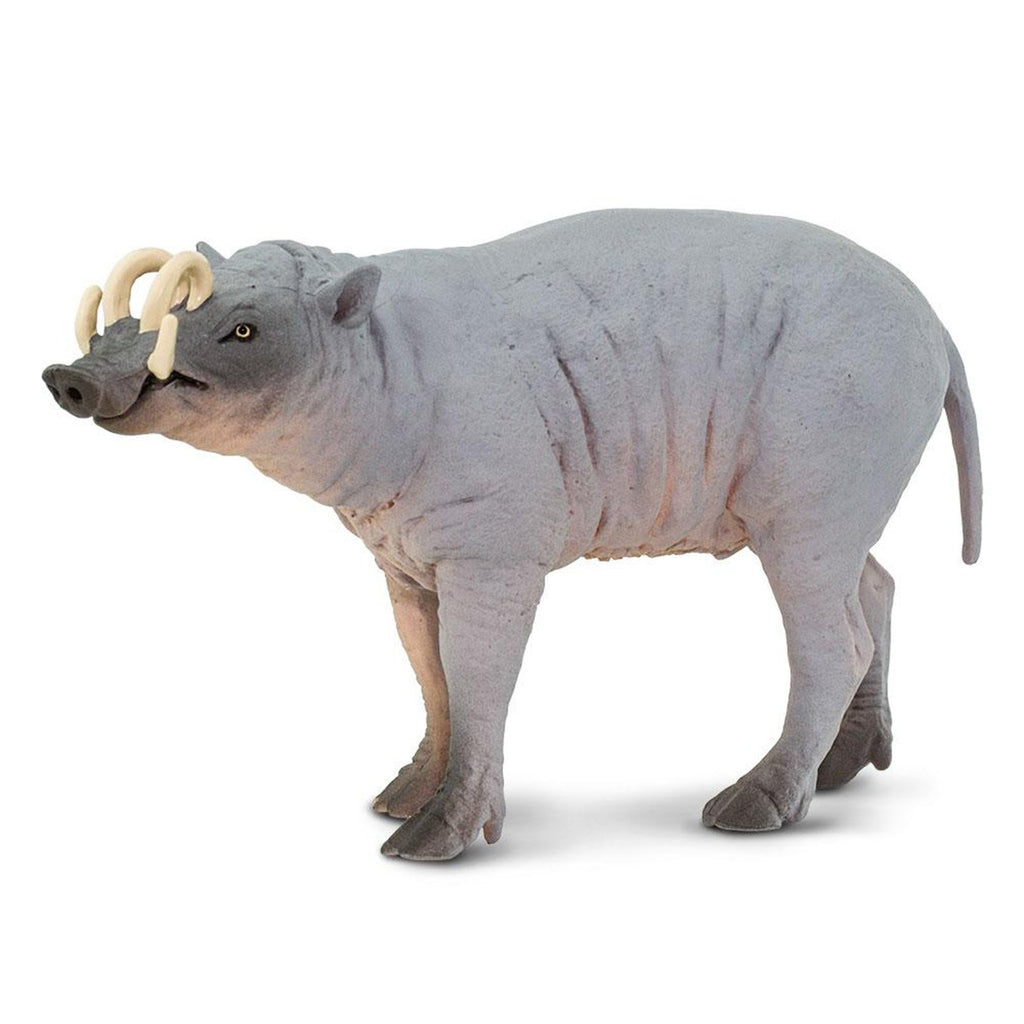 Babirusa Animal Figure Safari Ltd 100102