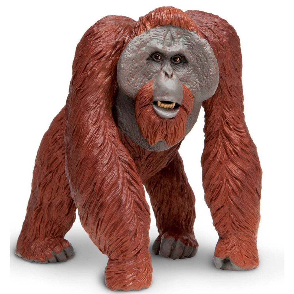 Bornean Orangutan Wildlife Wonders Figure Safari Ltd - Radar Toys
