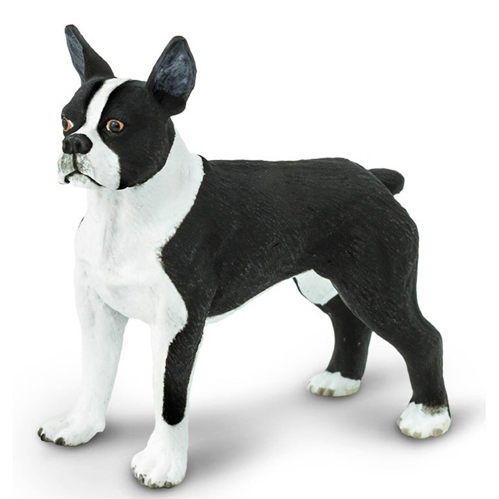 Boston Terrier Best In Show Dogs Figure Safari Ltd - Radar Toys