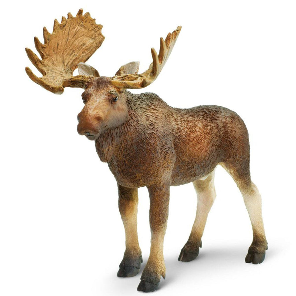 Bull Moose North American Wildlife Figure Safari Ltd - Radar Toys