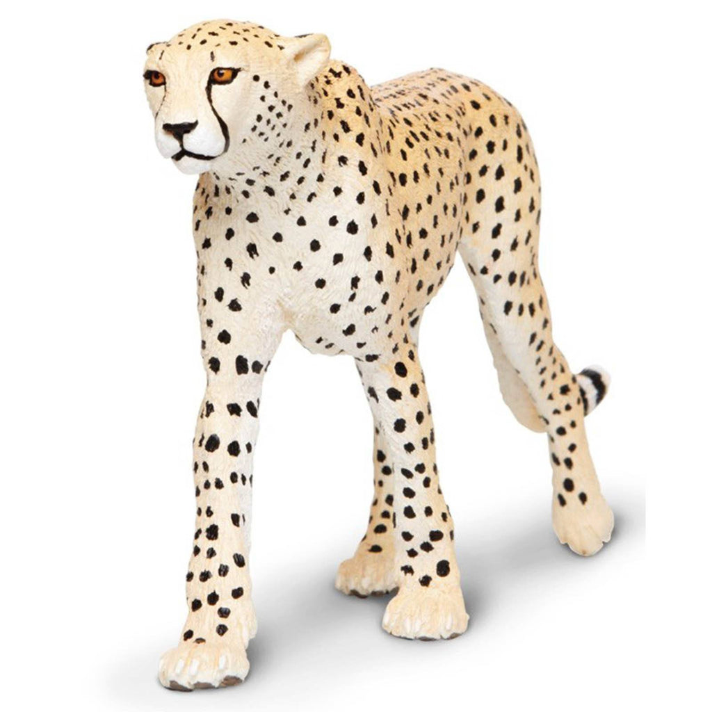 Cheetah Wildlife Wonders Figure Safari Ltd - Radar Toys
