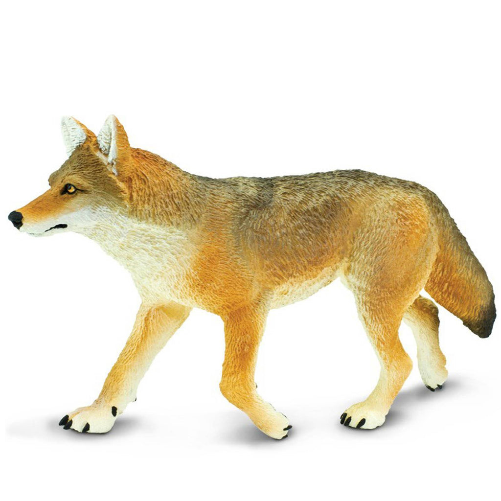Coyote Wildlife Wonders Figure Safari Ltd - Radar Toys