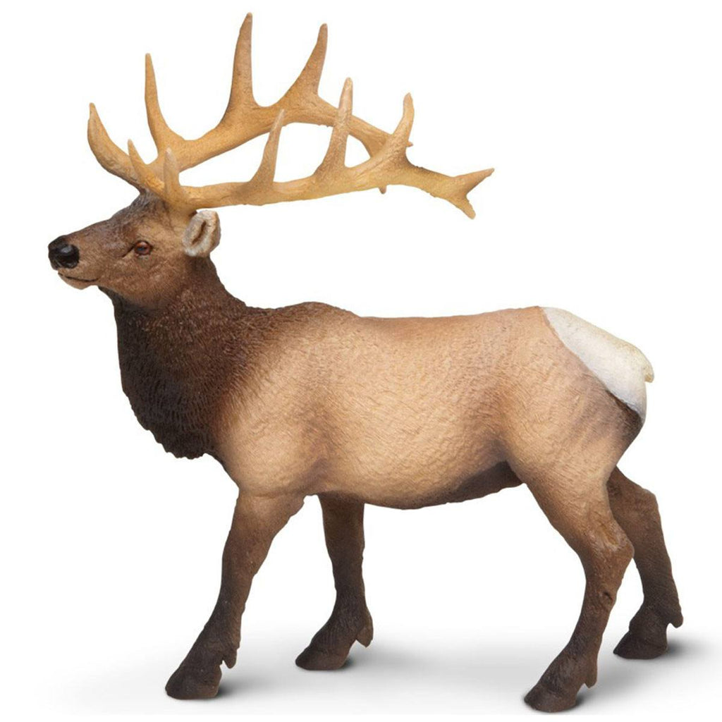Elk Bull North American Wildlife Figure Safari Ltd - Radar Toys