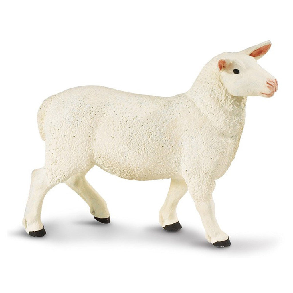 Ewe Safari Farm Safari Ltd - Radar Toys