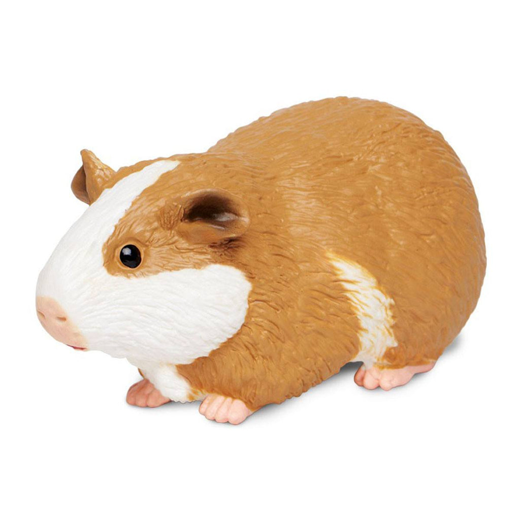 Guinea Pig Incredible Creatures Figure Safari Ltd - Radar Toys