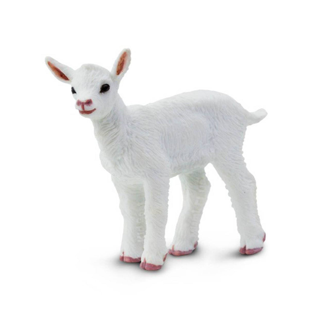 Kid Goat Safari Farm Safari Ltd - Radar Toys