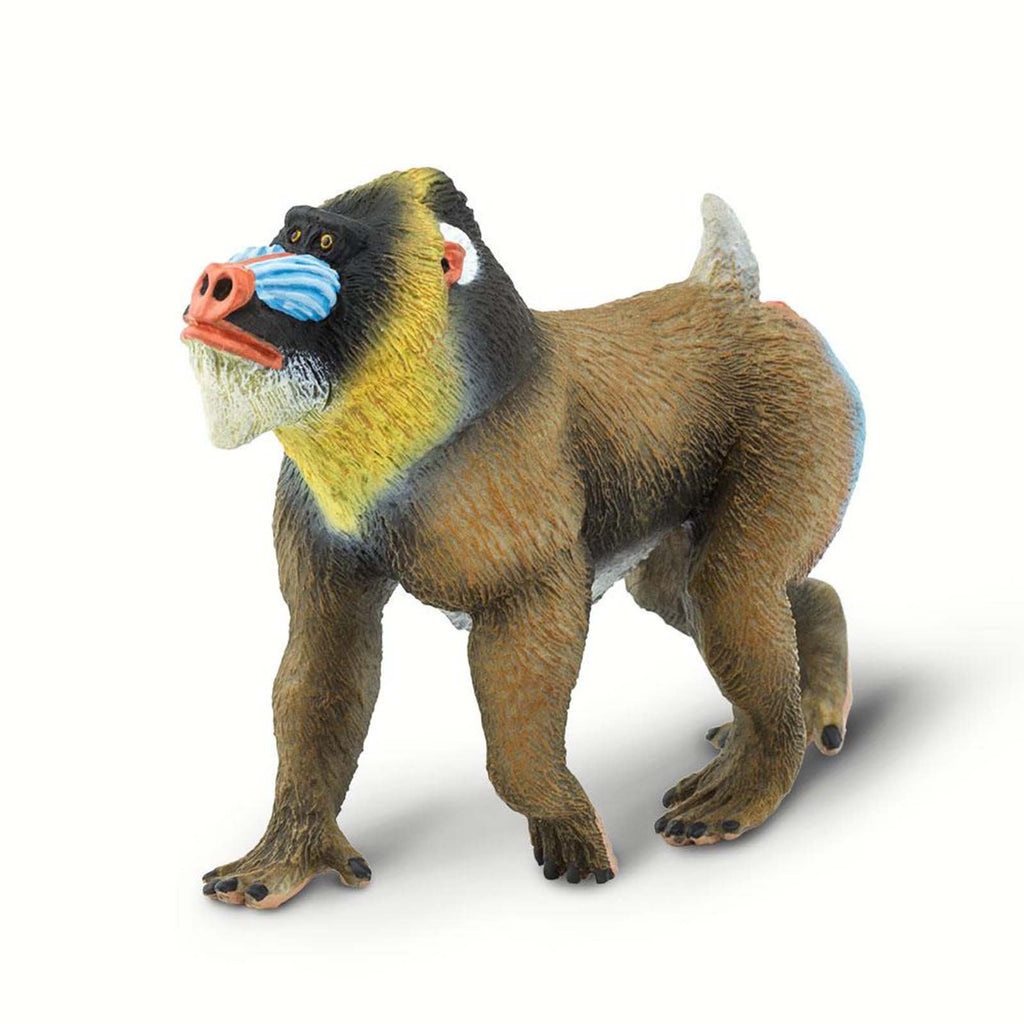 Mandrill Wild Safari Animal Figure Safari Ltd 100273